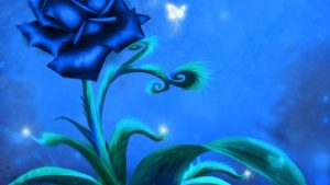 23-02-17-blue-roses-wallpapers4276