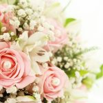 24-02-17-roses-wallpapers81