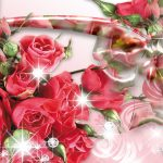 24-02-17-roses-wallpapers98