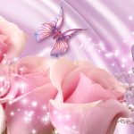 26-02-17-pink-roses-wallpapers1594