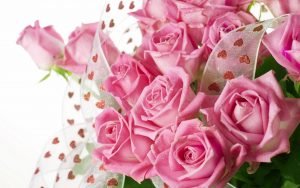 26-02-17-pink-roses-wallpapers1597