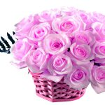26-02-17-pink-roses-wallpapers1600