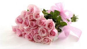 26-02-17-pink-roses-wallpapers1604