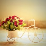26-02-17-red-roses-bike-basket12054