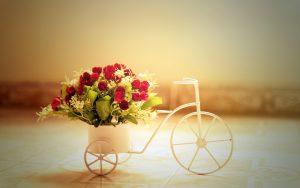26-02-17-red-roses-bike-basket12054