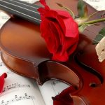 27-02-17-music-violin-red-rose16096