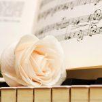 27-02-17-piano-white-rose16804