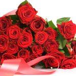 27-02-17-roses8802