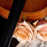 27-02-17-violin-roses15856