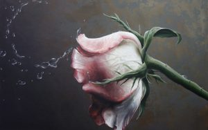 27-02-17-wet-rose-painting12845