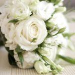 27-02-17-white-rose-flowers10140