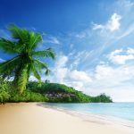 Background-Tropical-Beach-Wallpaper