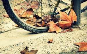 Bicycle-Autumn-Wheels-Hd-Wallpaper