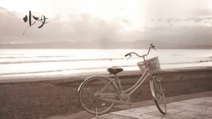 Bicycle-On-The-Beach-Wallpaper