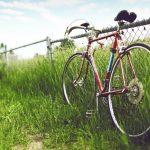 Bicycle-On-The-Farm-Hd-Desktop