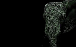 24-02-17-elephant-wallpapers510