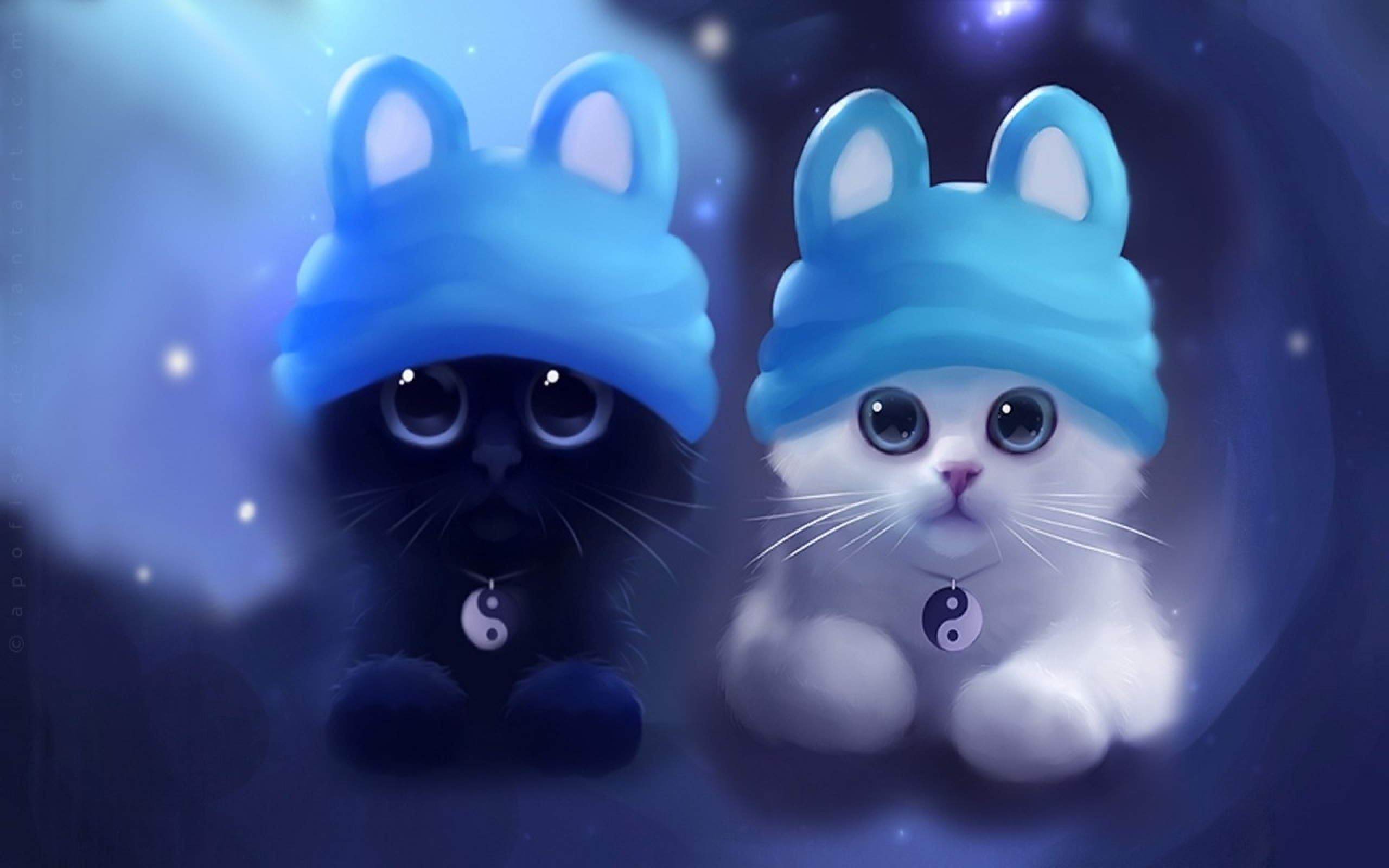 White cat  Cute wallpapers