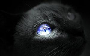 27-02-17-earth-cat-eye15688