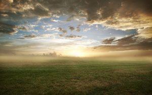 27-02-17-foggy-landscape8753