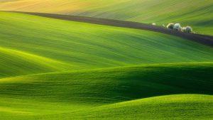 27-02-17-hills-landscape16460
