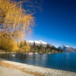 27-02-17-lake-wakatipu-landscape15511
