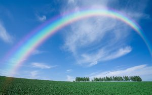 27-02-17-rainbow-landscape17243
