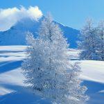 27-02-17-snow-landscape17354