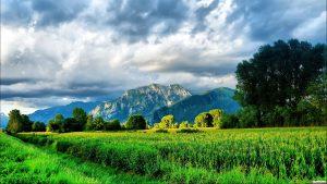 28-02-17-green-field-landscape-2058713554