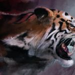 28-02-17-tiger-wallpapers948