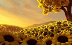 28-02-17-world-of-sunflowers16883