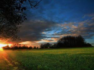 ---amazing-sunset-6518