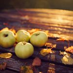 ---apples-leaves-autumn-evening-2152