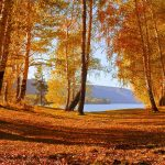 ---autumn-forest-lake-6761