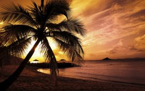 ---beach-sunset-background-13504
