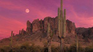 ---beautiful-arizona-sunset-7013