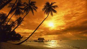 ---best-sunset-80