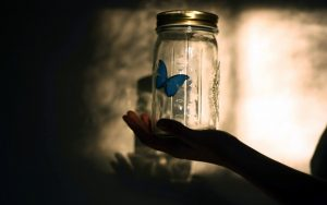 ---butterfly-blue-jar-13901