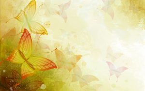 ---butterfly-vector-13903