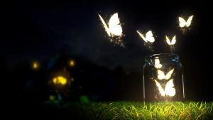 ---butterfly-wallpapers-833