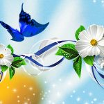 ---butterfly-wallpapers-834