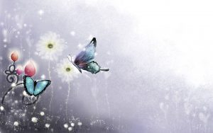 ---butterfly-wallpapers-840