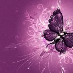 ---butterfly-wallpapers-841