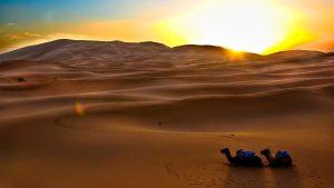 ---desert-sunset-1777
