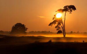 ---evening-foggy-sunset-8580