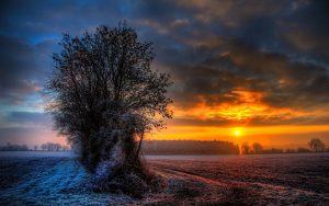 ---frosty-sunset-14983