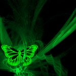 ---green-lights-butterfly-15157