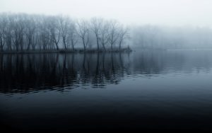 ---lake-mist-pictures-10050