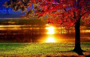 ---lakeside-sunset-reflection-1184