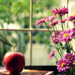 ---mood-apple-red-flowers-pink-yellow-15807