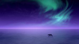 polar-bear-2560x1440-aurora-borealis-northern-lights-hd-4504